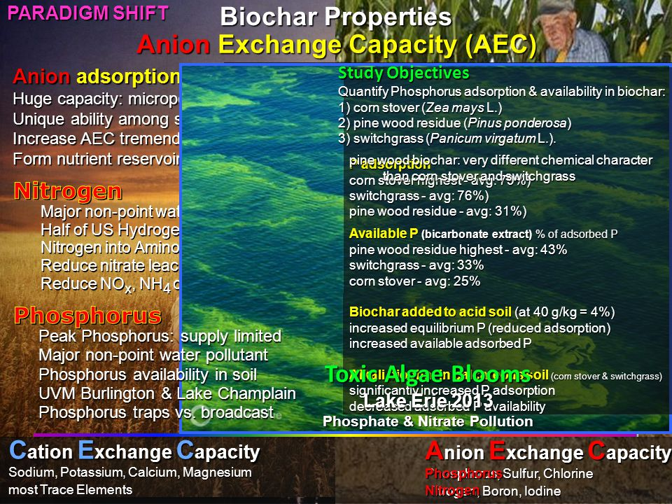 Anion adsorption (negative ions) Huge capacity: micropores Unique ability among soil components Increase AEC tremendously (+10–20) Form nutrient reservoirs in soil matrix Nitrogen, Phosphorus & Microbes Nitrogen-cycle bacteria Free-living nitrogen-fixing bacteria Phosphorus, fungi & biochar Challenges to handle living cultures Probiotic: create microbe-friendly soil Reduce non-point pollution Curb eutrophication C ation E xchange C apacity Sodium, Potassium, Calcium, Magnesium most Trace Elements A nion E xchange C apacity Phosphorus, Sulfur, Chlorine Nitrogen, Boron, Iodine Nitrogen Phosphorus Major non-point water pollutant Half of US Hydrogen production Nitrogen into Amino Acids into Proteins Reduce nitrate leaching 40-80% Reduce NO x, NH 4 out-gassing: adsorption Peak Phosphorus: supply limited Major non-point water pollutant Phosphorus availability in soil UVM Burlington & Lake Champlain Phosphorus traps vs.