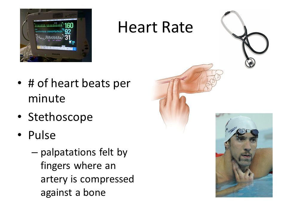 Heart Rate # of heart beats per minute Stethoscope Pulse – palpatations felt by fingers where an artery is compressed against a bone