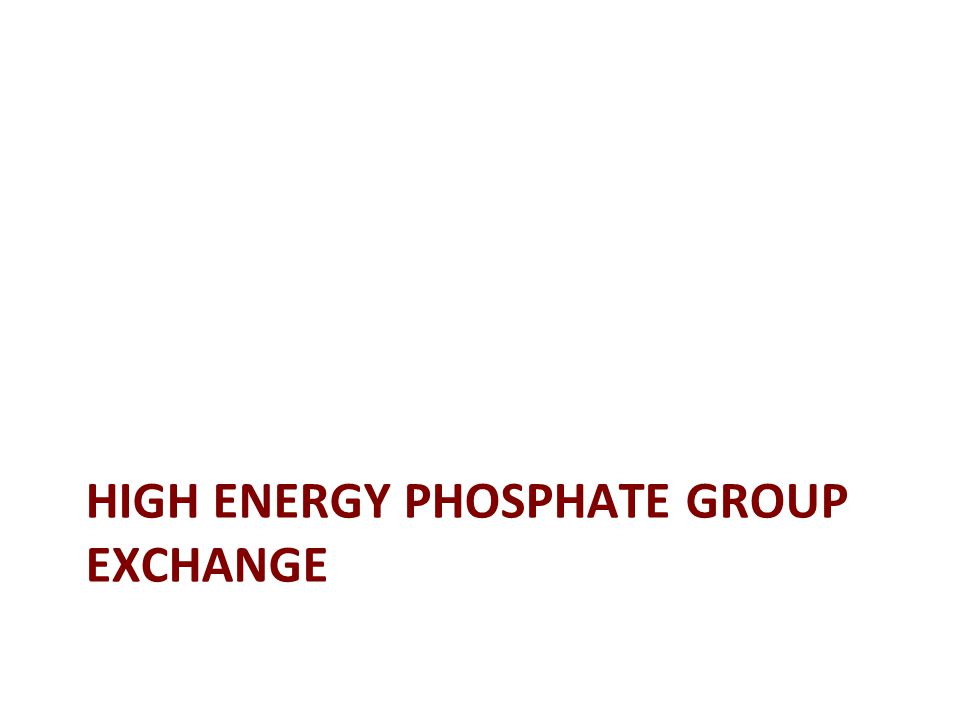 HIGH ENERGY PHOSPHATE GROUP EXCHANGE