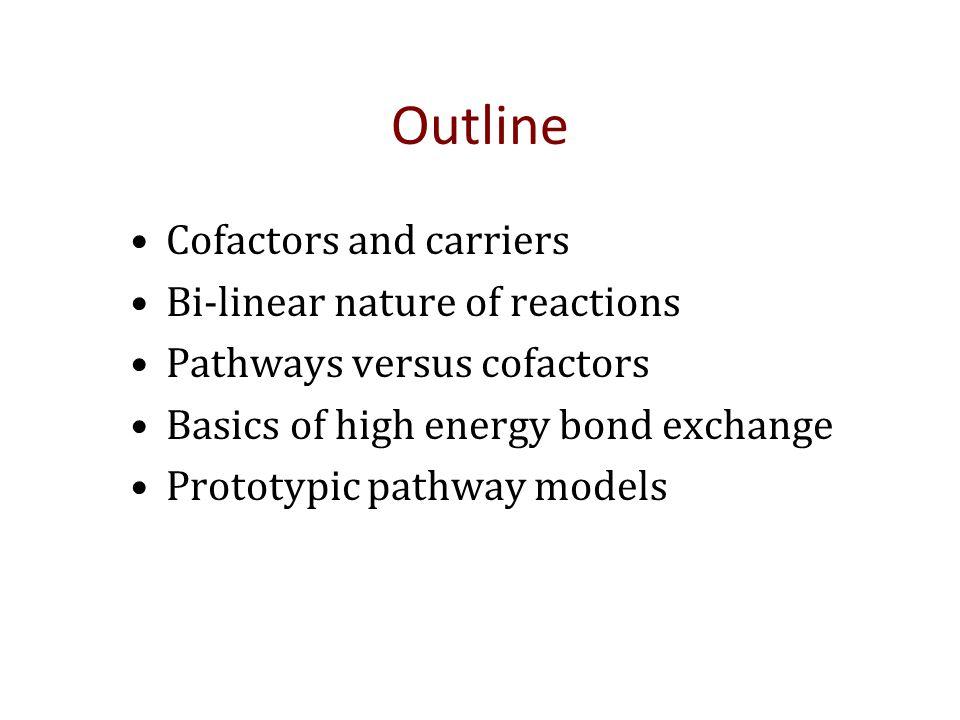 PROTOTYPIC METABOLIC PATHWAYS WITH COFACTORS