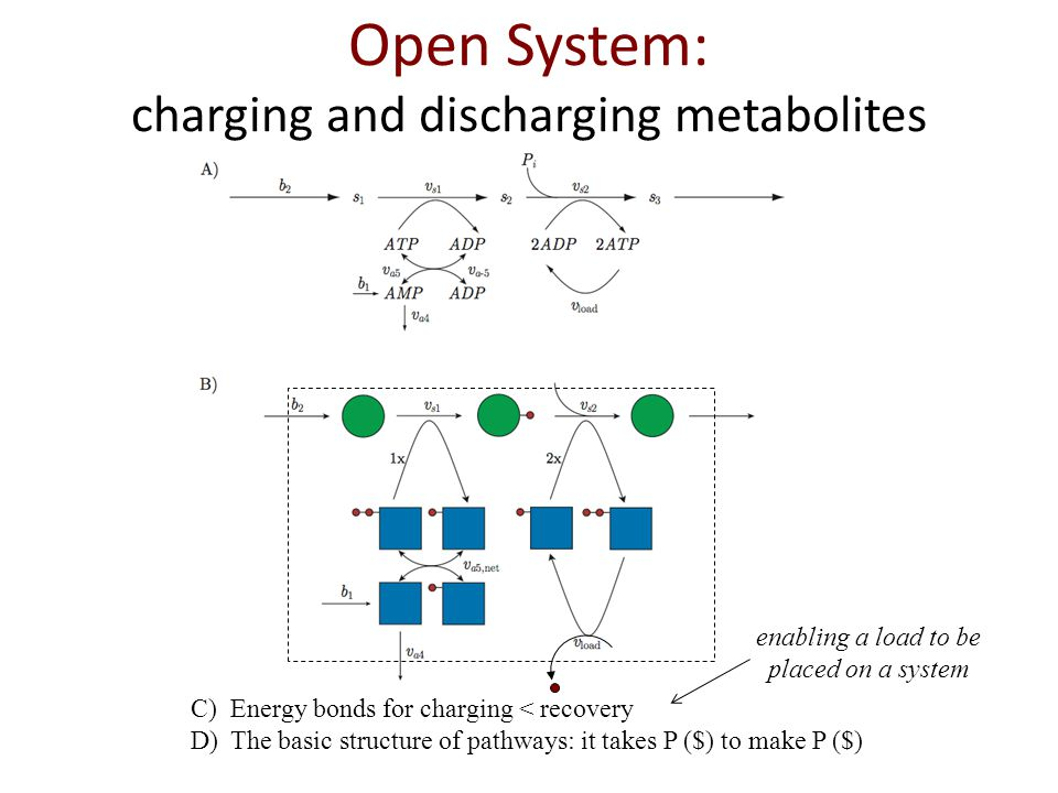 C)Energy bonds for charging < recovery D)The basic structure of pathways: it takes P ($) to make P ($) Open System: charging and discharging metabolites enabling a load to be placed on a system