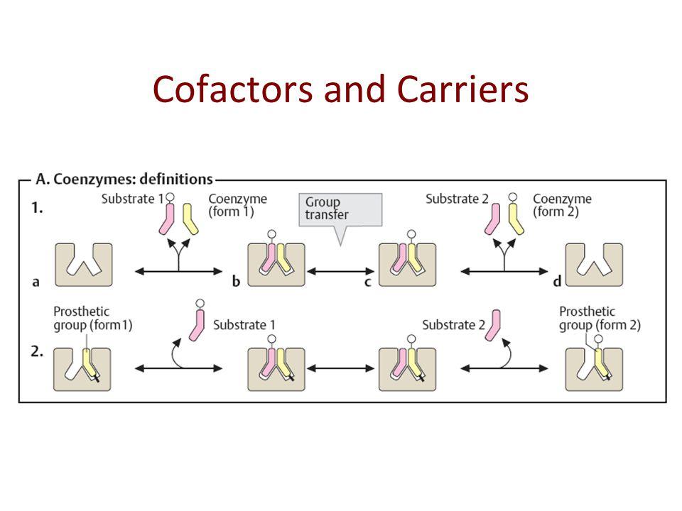 Basic Cofactor/Carrier Molecules in Metabolism