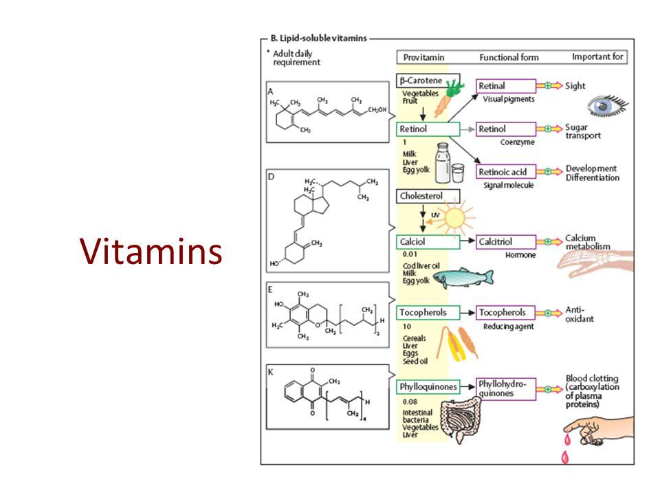 2. Buffer on Energy Storage is creatine in mammalian tissues buffer molecule