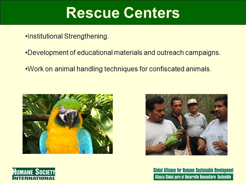 Rescue Centers Institutional Strengthening.