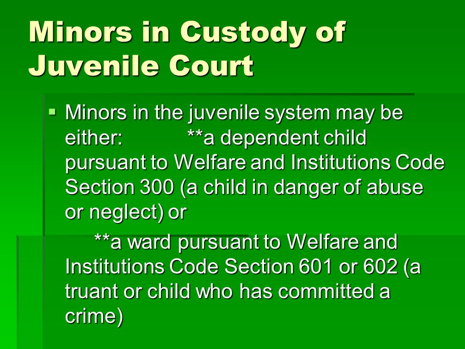 Minors in Custody of Juvenile Court Minors in the juvenile system may be either:**a dependent child pursuant to Welfare and Institutions Code Section 300 (a child in danger of abuse or neglect) or Minors in the juvenile system may be either:**a dependent child pursuant to Welfare and Institutions Code Section 300 (a child in danger of abuse or neglect) or **a ward pursuant to Welfare and Institutions Code Section 601 or 602 (a truant or child who has committed a crime)