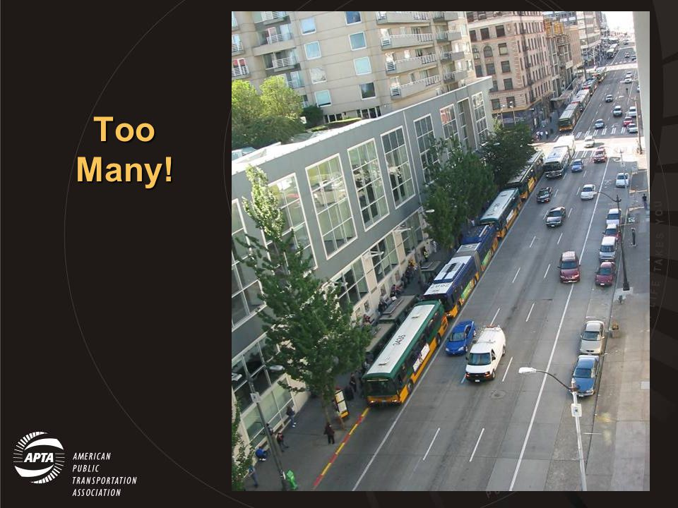 How Many Buses.
