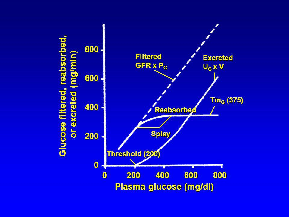 8006004002000 0 200 400 600 800 Plasma glucose (mg/dl) Glucose filtered, reabsorbed, or excreted (mg/min) Threshold (200) Splay Excreted U G x V Tm G (375) Reabsorbed Filtered GFR x P G