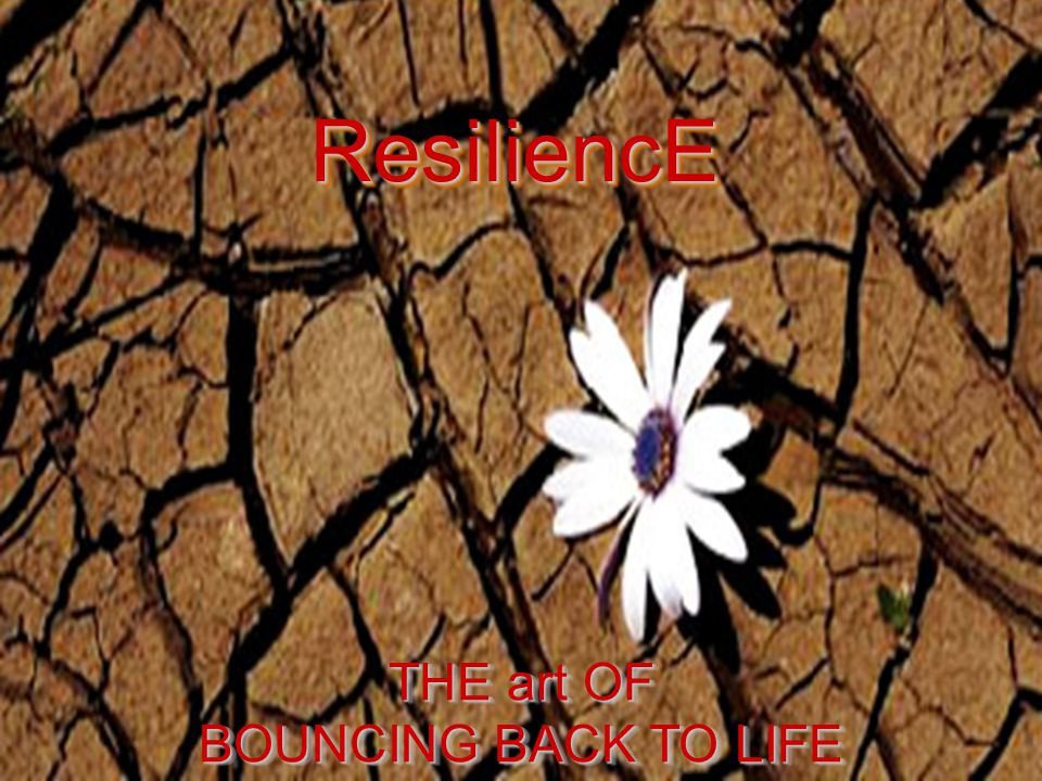 ResiliencE ResiliencE THE art OF BOUNCING BACK TO LIFE THE art OF BOUNCING BACK TO LIFE