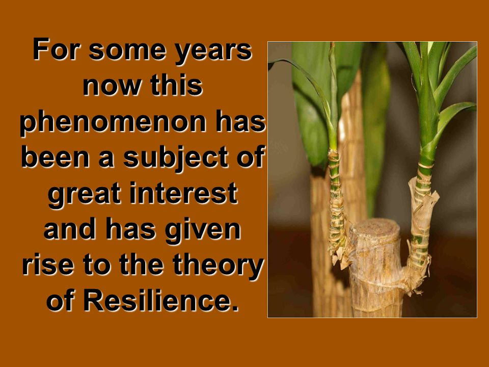 For some years now this phenomenon has been a subject of great interest and has given rise to the theory of Resilience.