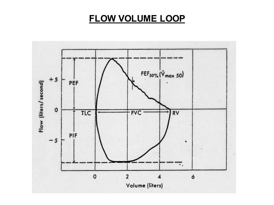 FLOW VOLUME LOOP