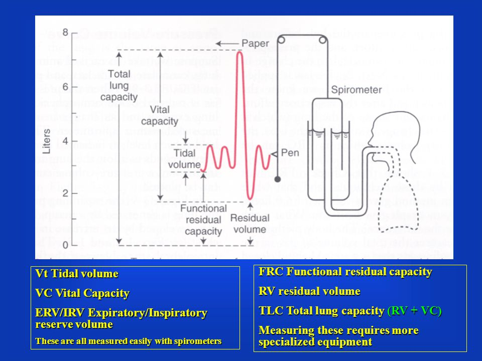 55 Total Lung Capacity (TLC) It is the total volume of air within the lung after maximum inspiration.