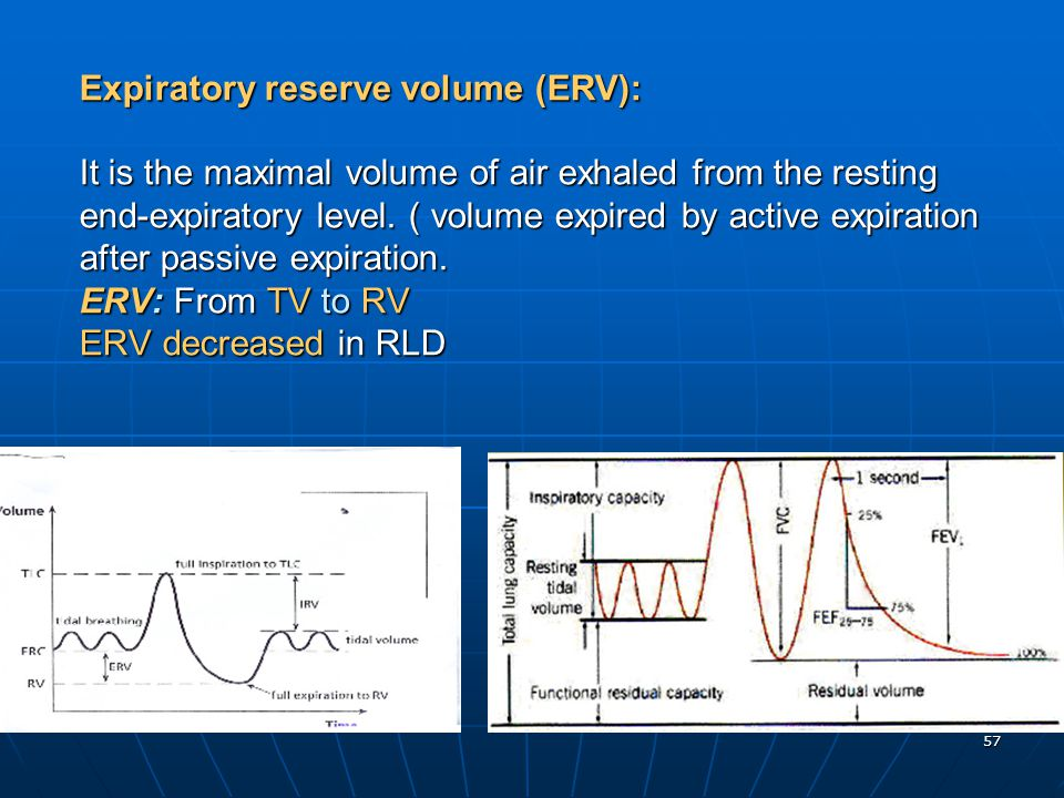 57 Expiratory reserve volume (ERV): It is the maximal volume of air exhaled from the resting end-expiratory level. ( volume expired by active expirati