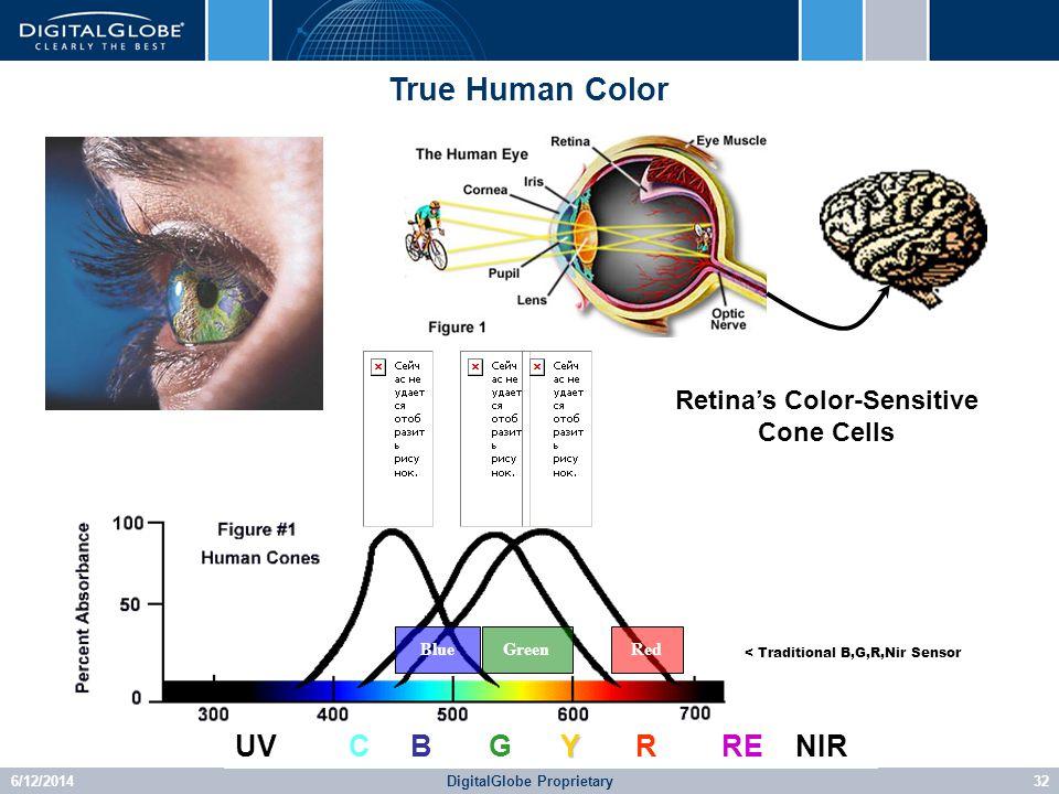 6/12/2014DigitalGlobe Proprietary32 Retinas Color-Sensitive Cone Cells Y UV C B G Y R RE NIR RedGreenBlue < Traditional B,G,R,Nir Sensor True Human Color