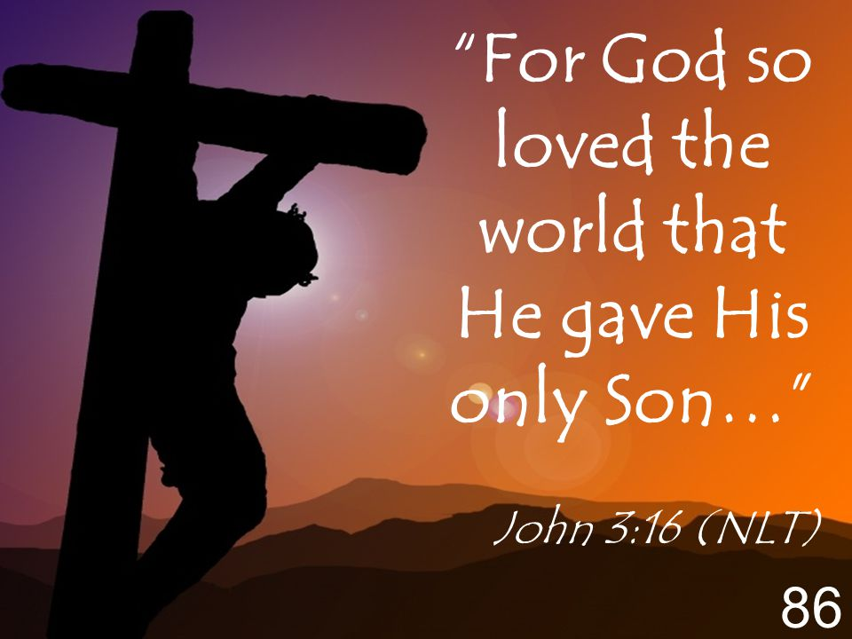 For God so loved the world that He gave His only Son… John 3:16 (NLT) 86