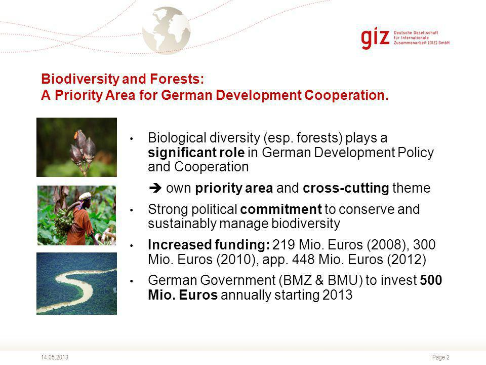 Page 2 Biodiversity and Forests: A Priority Area for German Development Cooperation.