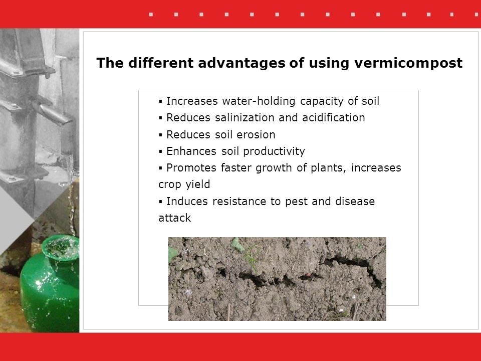 Increases water-holding capacity of soil Reduces salinization and acidification Reduces soil erosion Enhances soil productivity Promotes faster growth of plants, increases crop yield Induces resistance to pest and disease attack The different advantages of using vermicompost