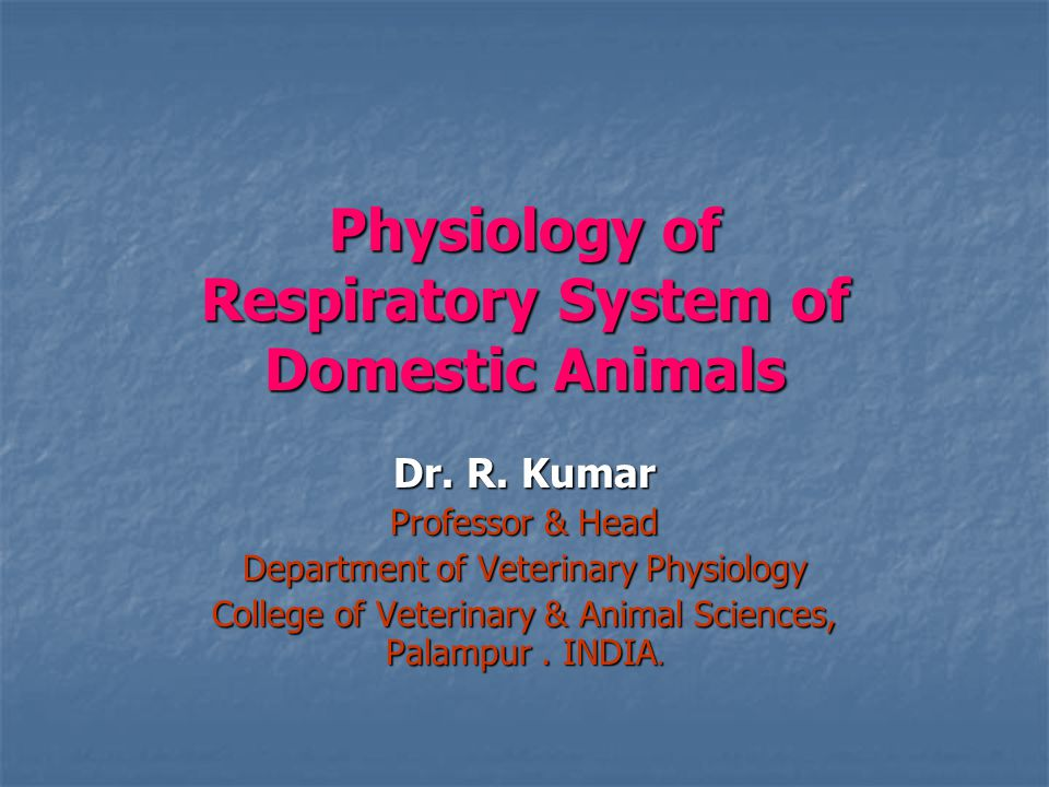 Physiology of Respiratory System of Domestic Animals Dr.