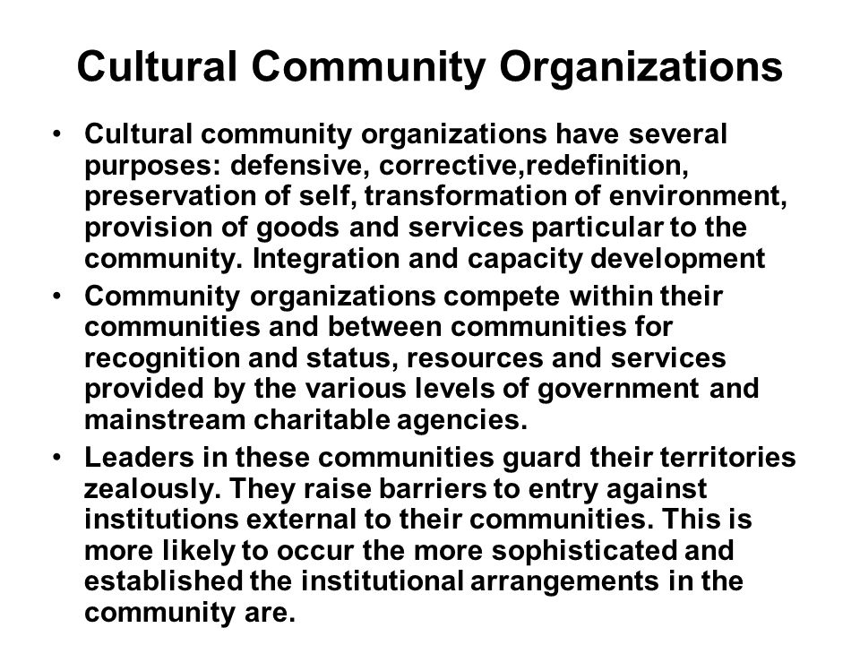Who is Responsible for Community Development How is a community motivated to effect change and maintain momentum.