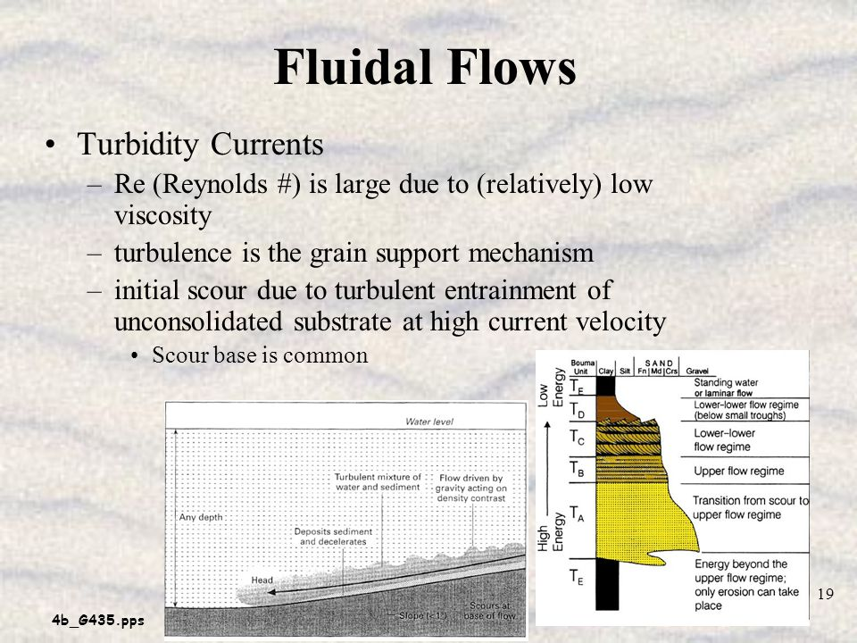 4b_G435.pps 19 Fluidal Flows Turbidity Currents –Re (Reynolds #) is large due to (relatively) low viscosity –turbulence is the grain support mechanism –initial scour due to turbulent entrainment of unconsolidated substrate at high current velocity Scour base is common