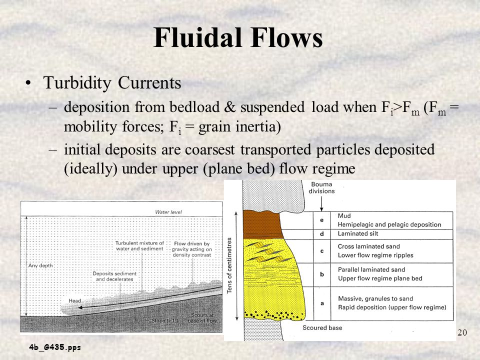 4b_G435.pps 20 Fluidal Flows Turbidity Currents –deposition from bedload & suspended load when F i >F m (F m = mobility forces; F i = grain inertia) –initial deposits are coarsest transported particles deposited (ideally) under upper (plane bed) flow regime