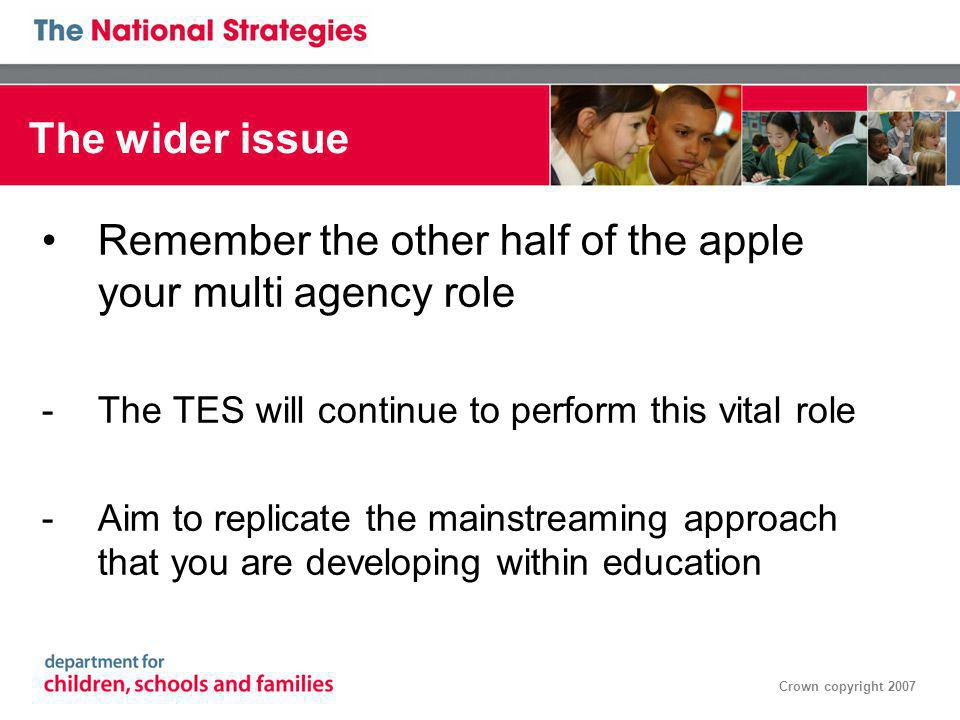Crown copyright 2007 The wider issue Remember the other half of the apple your multi agency role -The TES will continue to perform this vital role -Aim to replicate the mainstreaming approach that you are developing within education