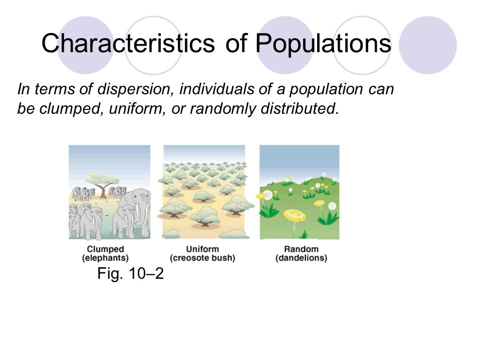 Characteristics of Populations © Brooks/Cole Publishing Company / ITP In terms of dispersion, individuals of a population can be clumped, uniform, or