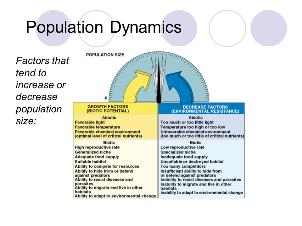 Population Dynamics © Brooks/Cole Publishing Company / ITP Factors that tend to increase or decrease population size: Fig. 10–3