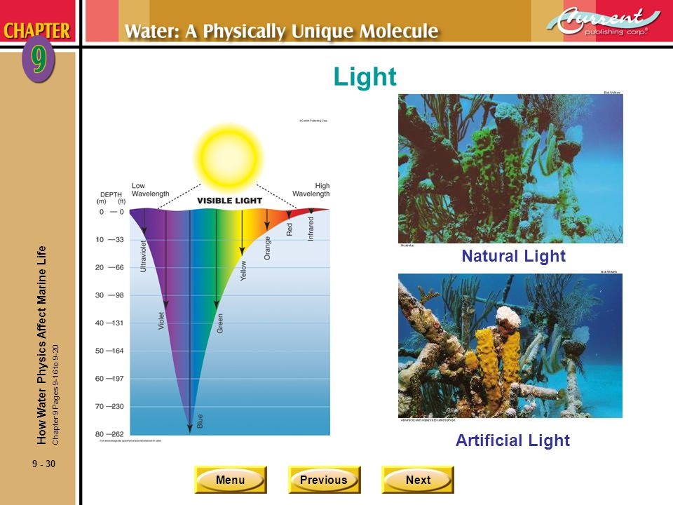 MenuPreviousNext 9 - 30 Light Natural Light Artificial Light How Water Physics Affect Marine Life Chapter 9 Pages 9-16 to 9-20