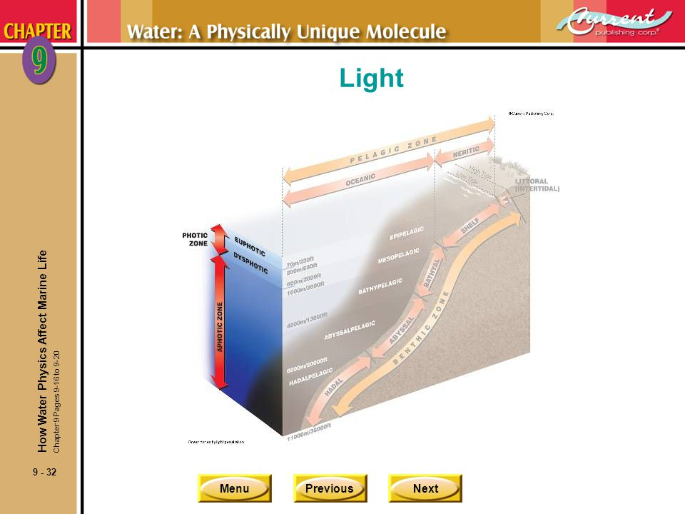 MenuPreviousNext 9 - 32 Light How Water Physics Affect Marine Life Chapter 9 Pages 9-16 to 9-20