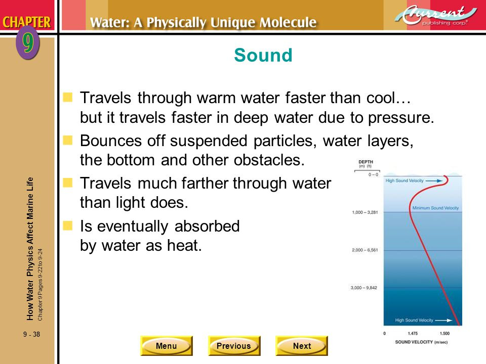 MenuPreviousNext 9 - 38 Sound nTravels through warm water faster than cool… but it travels faster in deep water due to pressure. nBounces off suspende