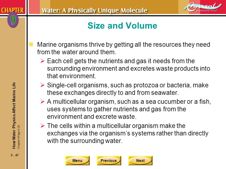 MenuPreviousNext 9 - 48 Size and Volume nHigh surface-to-volume ratio is important for cell function.