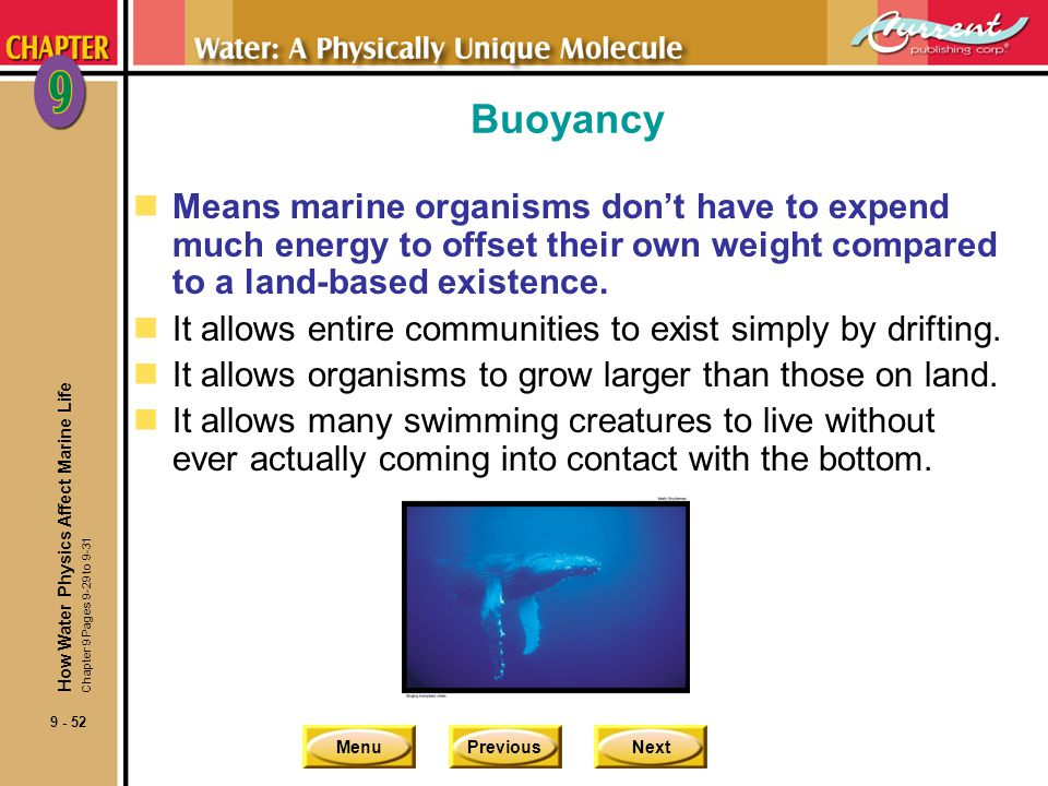 MenuPreviousNext 9 - 53 Buoyancy Buoyancy Makes Size Possible How Water Physics Affect Marine Life Chapter 9 Pages 9-29 to 9-31