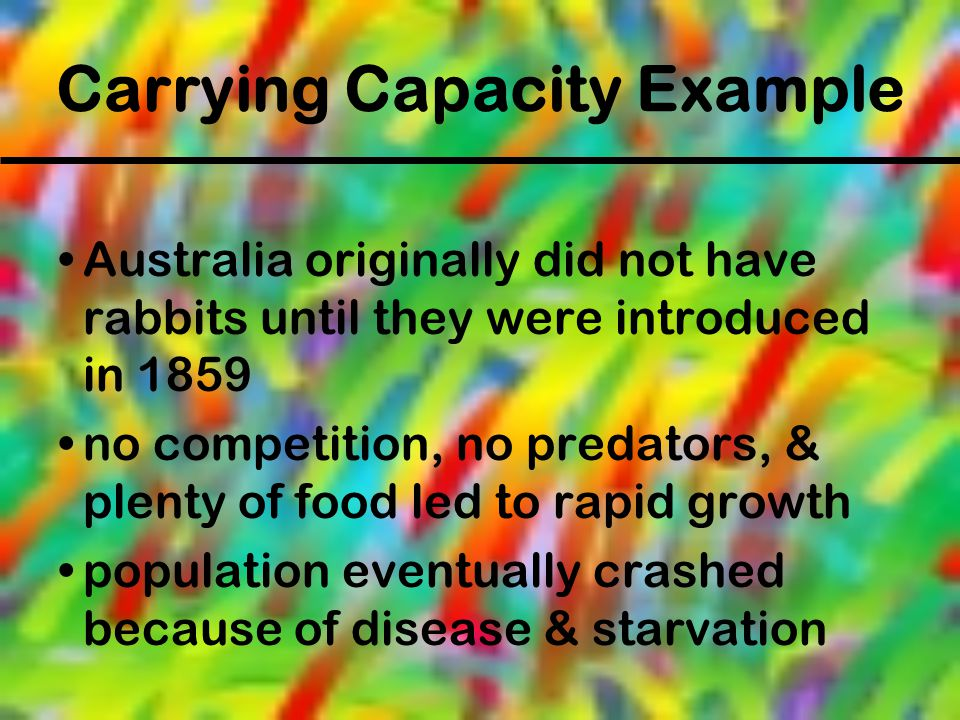 Carrying Capacity Example Australia originally did not have rabbits until they were introduced in 1859 no competition, no predators, & plenty of food