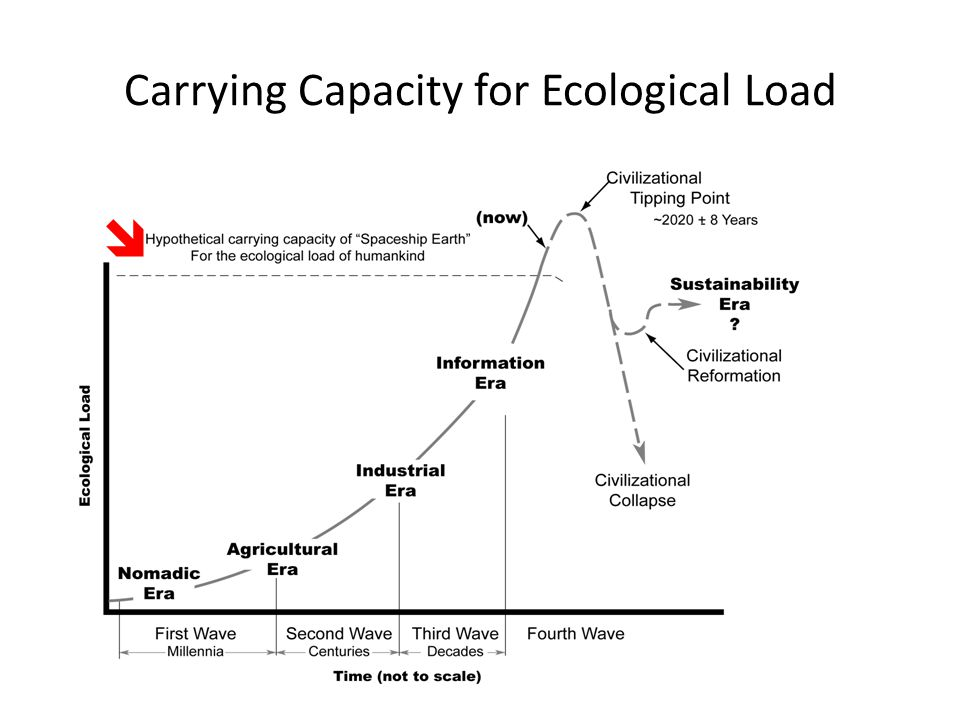 Now Beyond Carrying Capacity