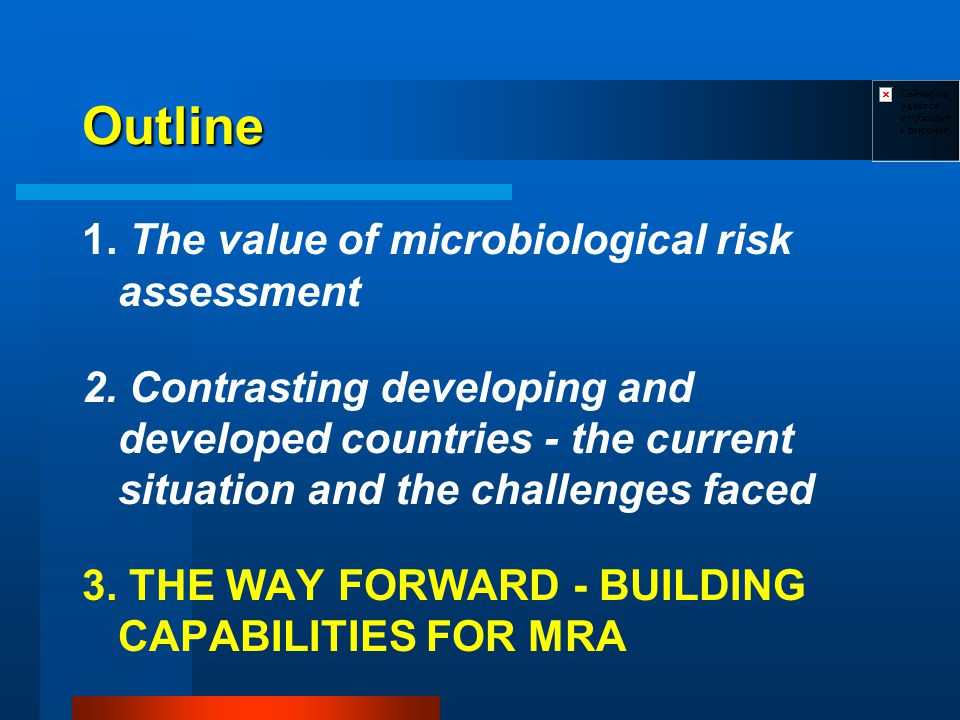 Outline 1. The value of microbiological risk assessment 2. Contrasting developing and developed countries - the current situation and the challenges f