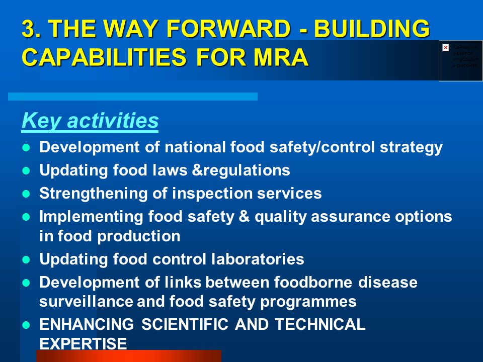 3. THE WAY FORWARD - BUILDING CAPABILITIES FOR MRA Key activities Development of national food safety/control strategy Updating food laws &regulations