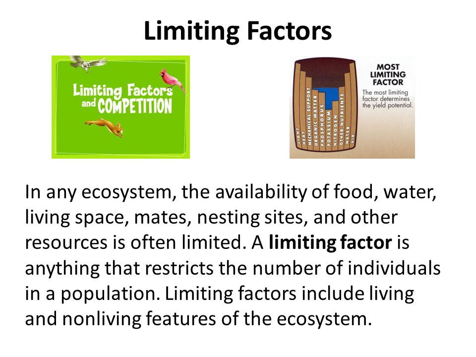 Limiting Factors In any ecosystem, the availability of food, water, living space, mates, nesting sites, and other resources is often limited. A limiti