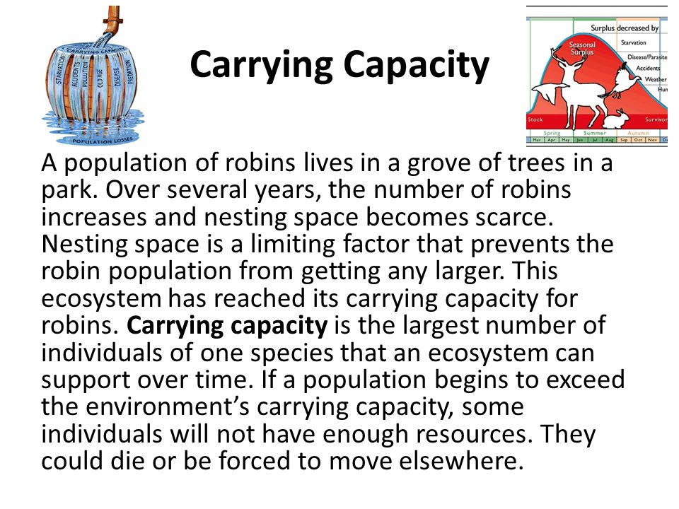 Carrying Capacity A population of robins lives in a grove of trees in a park. Over several years, the number of robins increases and nesting space bec