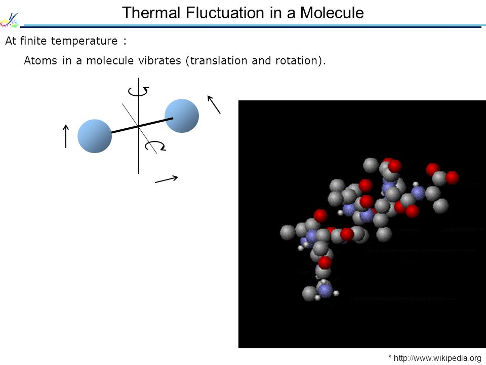 Thermal Fluctuation in a Molecule At finite temperature : Atoms in a molecule vibrates (translation and rotation).