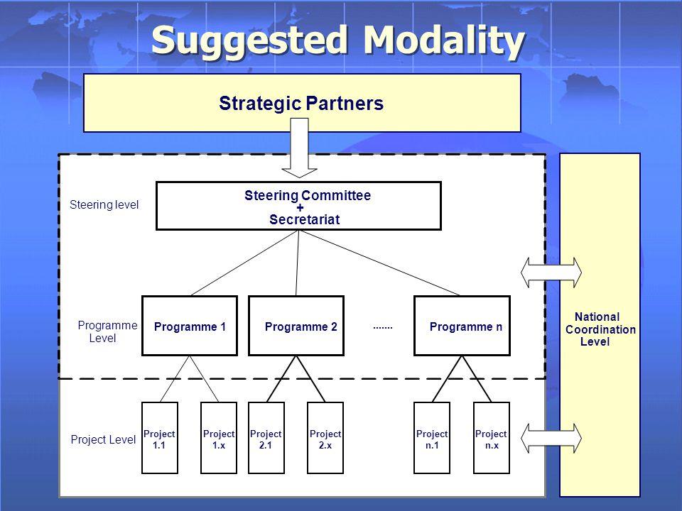 Suggested Modality Strategic Partners Steering level.......