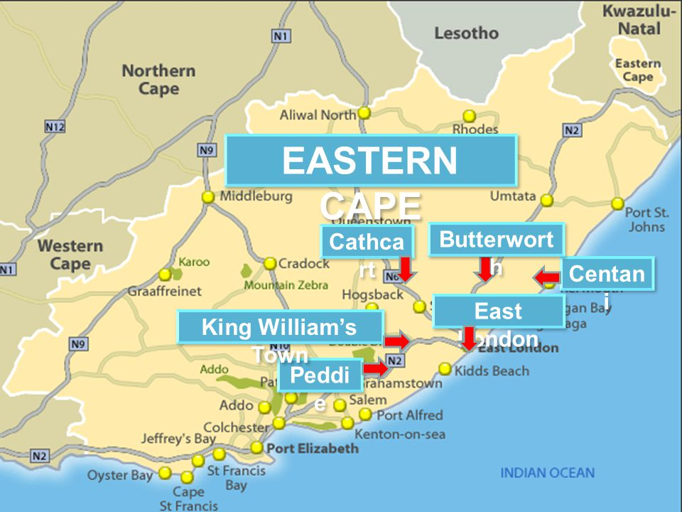 Centan i Cathca rt Peddi e East London Butterwort h EASTERN CAPE King Williams Town