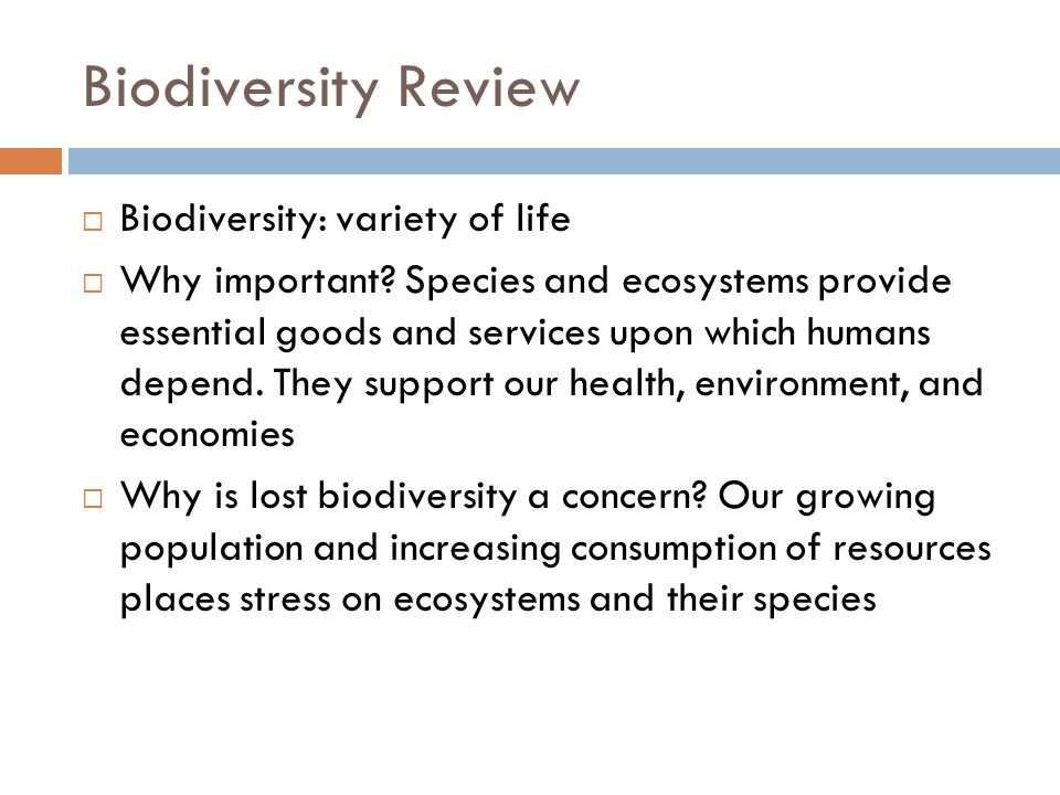 Biodiversity Review Biodiversity: variety of life Why important.