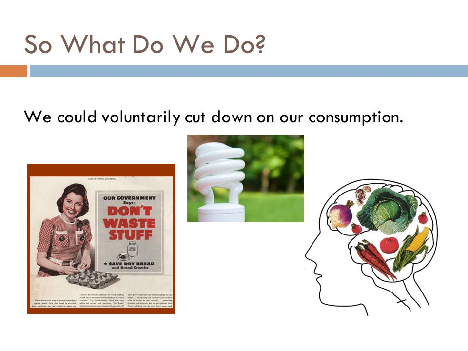 So What Do We Do? We could voluntarily cut down on our consumption.