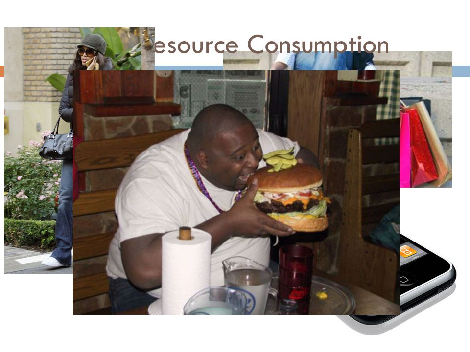 American Resource Consumption