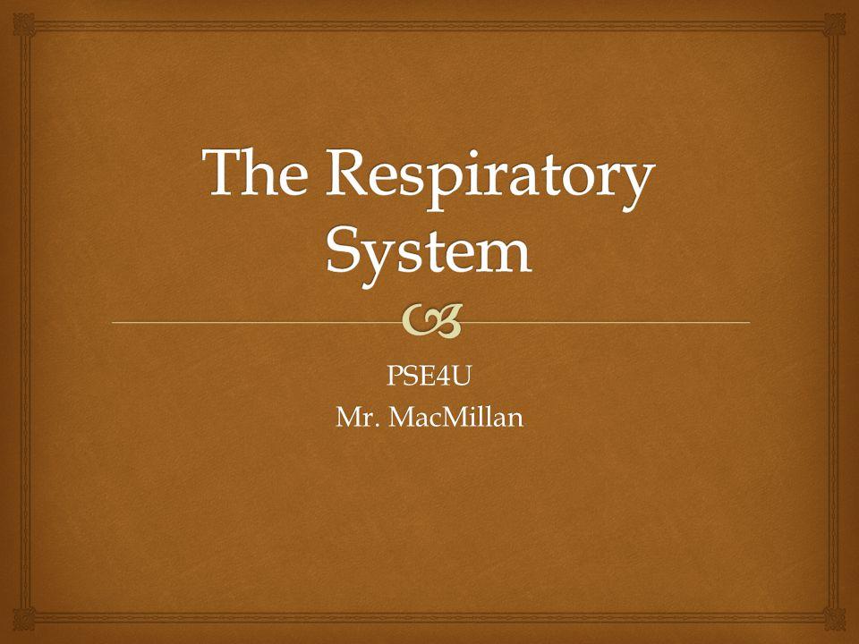 PSE4U Mr. MacMillan