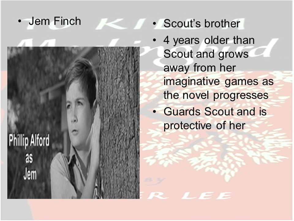 Jem Finch Scouts brother 4 years older than Scout and grows away from her imaginative games as the novel progresses Guards Scout and is protective of her