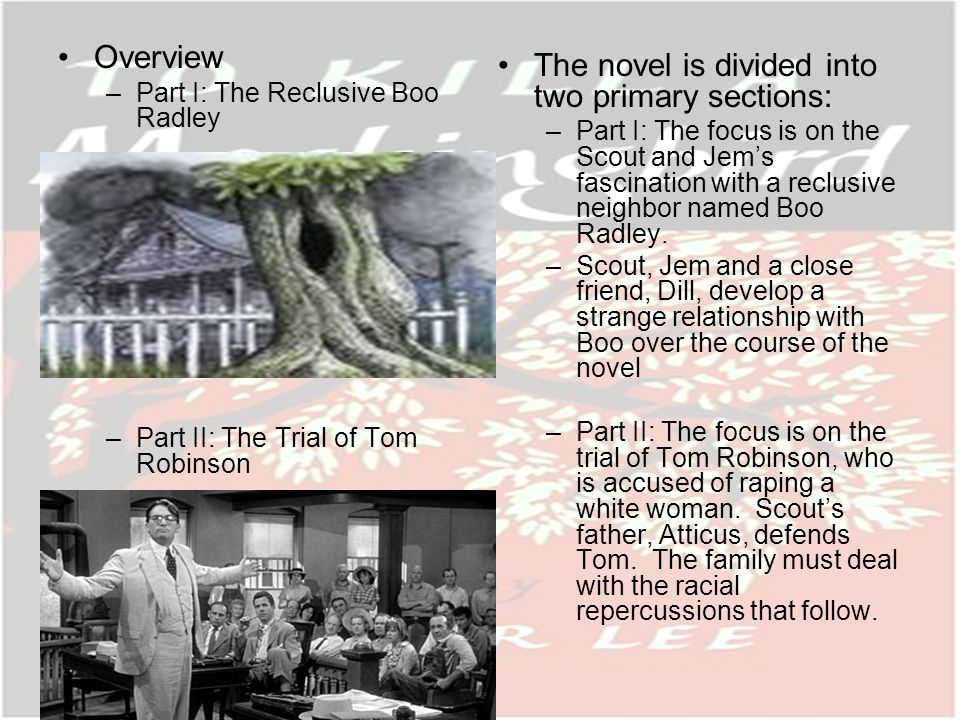 Overview –Part I: The Reclusive Boo Radley –Part II: The Trial of Tom Robinson The novel is divided into two primary sections: –Part I: The focus is on the Scout and Jems fascination with a reclusive neighbor named Boo Radley.