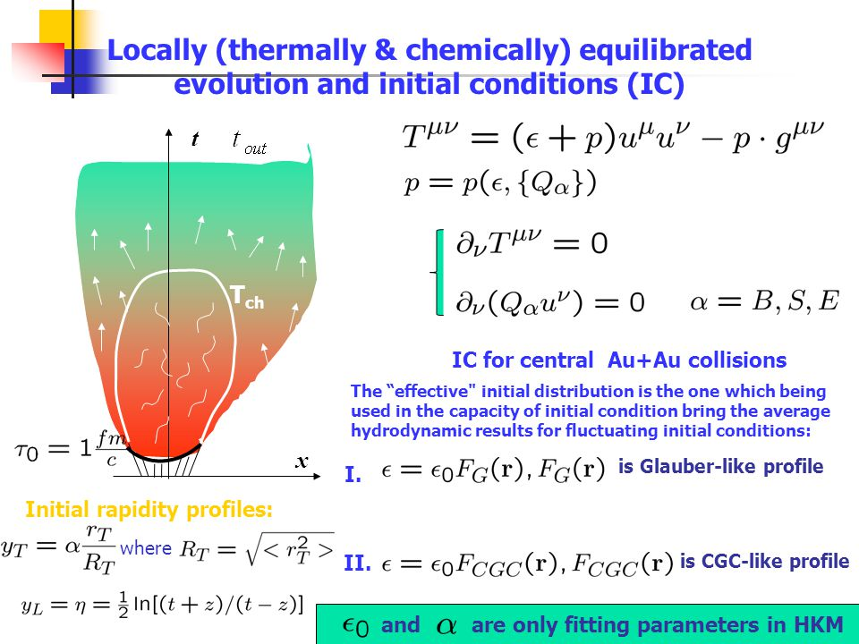 t x T ch Locally (thermally & chemically) equilibrated evolution and initial conditions (IC) IC for central Au+Au collisions The effective initial distribution is the one which being used in the capacity of initial condition bring the average hydrodynamic results for fluctuating initial conditions: I.