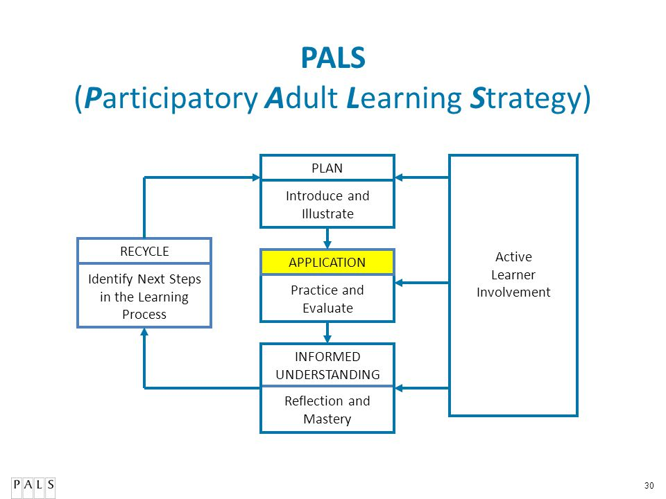 30 PALS (Participatory Adult Learning Strategy) PLAN APPLICATION RECYCLE Active Learner Involvement Reflection and Mastery Practice and Evaluate Intro