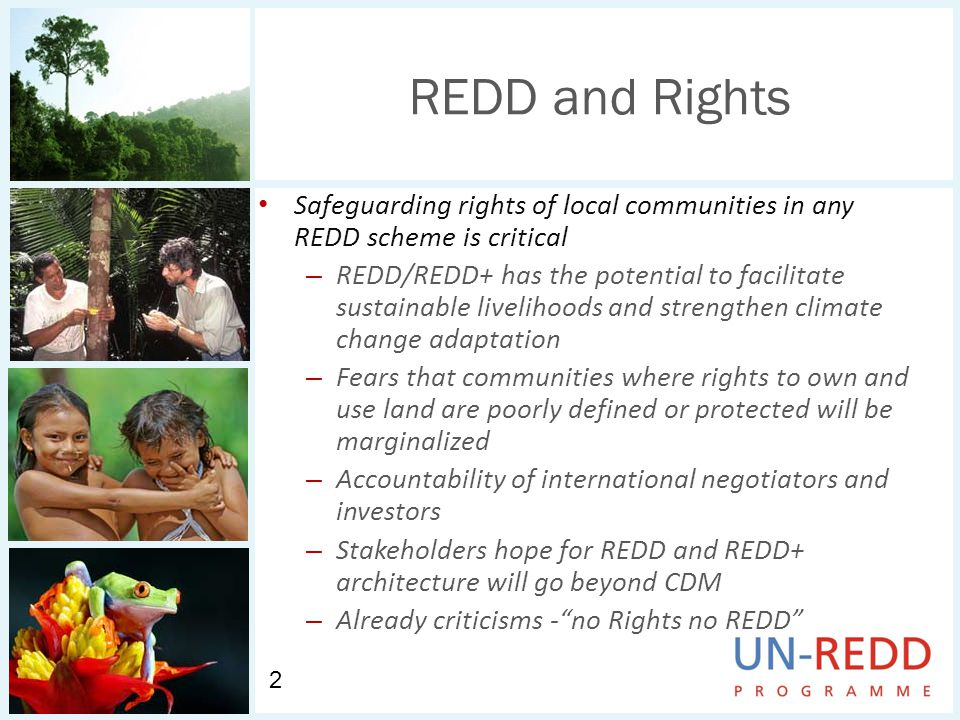 REDD and Rights Safeguarding rights of local communities in any REDD scheme is critical – REDD/REDD+ has the potential to facilitate sustainable livelihoods and strengthen climate change adaptation – Fears that communities where rights to own and use land are poorly defined or protected will be marginalized – Accountability of international negotiators and investors – Stakeholders hope for REDD and REDD+ architecture will go beyond CDM – Already criticisms -no Rights no REDD 2